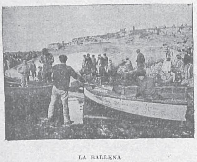 Ballena1895_NuevoMundo2