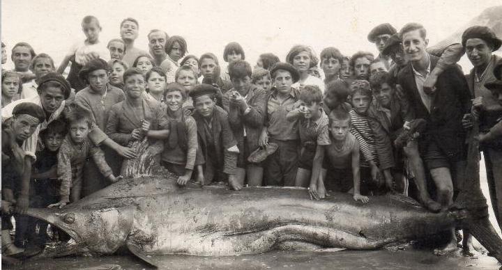 Luarca1934