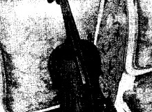StradivariusGijon